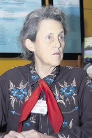 The movie inspired by her life starring Clare Daines is one of our absolute favorites. Dr Temple Grandin, Star Show, Ted Talks, Pretty People, I Movie, Inspirational, Inspired, Stars, Watch