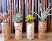 SALE!!! Succulent Cork Magnets, make great wedding favors or a perfect gift for the wine lover in your life