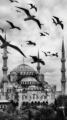 Photo Islam, Mosque Architecture, Istanbul City, Islamic Paintings, Beautiful Mosques, Hagia Sophia, Beautiful Nature Scenes, Islamic Wallpaper, Islamic Pictures