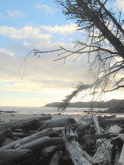 Burnett Bay / Burnett Bay, British Columbia, Canada, North America