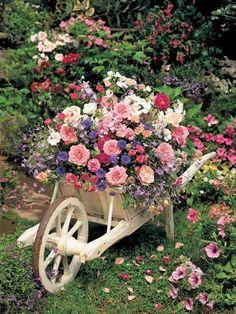 garden planters, rose, garden ideas, wheelbarrow, color