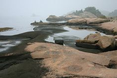 Tidal pools at Money Island,Thimble Islands,Stony Creek,CT Stony, Thimble, Connecticut, Pools, Islands, Water, Travel, Gripe Water, Viajes