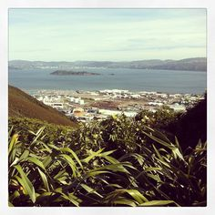 Wainuiomata Hill Lookout gives you great views of Wellington Harbor and Lower Hutt City.  Wainui is the mecca of hunting, fishing, hiking, camping and the great outdoors.  The locals love to show visitors around, a great place to visit to get started is Rimutaka Forest Park http://www.rimutakatrust.org.nz/