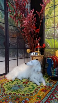 White borzoi lying on a beautiful carpet. It's a toy dog for a doll house. Looks so realistic! Miniature Dogs, Real Dog, Dog Sculpture, Animal Habitats, Abstract Nature, Fantasy Miniatures, Felt Art, Whippet, Felt Animals
