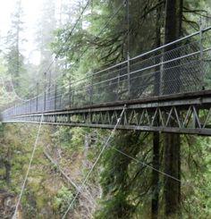 Rainy Day Hikes - Travel Oregon | Travel Oregon