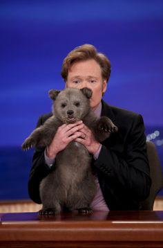 teamcoco: From Animal Expert David Mizejewski's Baby Brown Bear Visit Baby Animals, Cute Animals, Animal Babies, Animal Pictures, Cute Pictures, Baby Alligator, Conan O Brien, Holding Baby, Bear Cubs