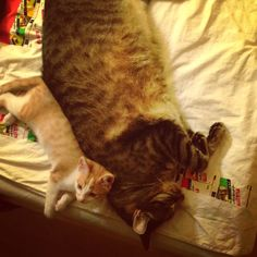 Sleeping togerher