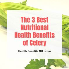 Medical Research, Health And Nutrition, Celery, Health Benefits