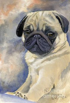 Shop for pug art from the world's greatest living artists. All pug artwork ships within 48 hours and includes a money-back guarantee. Choose your favorite pug designs and purchase them as wall art, home decor, phone cases, tote bags, and more! Black Pug Puppies, Bulldog Puppies, Inspiration Art, Pug Art, Pug Pictures, Golden Retriever, Retriever Dog, Pug Love, Watercolor Animals