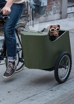 Picture of Bicycle Sidecar for Your Dog
