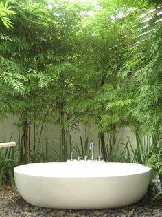 Urban Gardens / Mr. Steam Spa Sanctuary