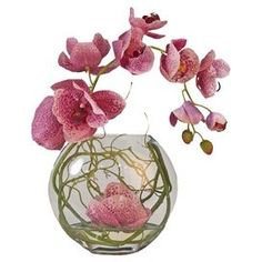 """Brimming with natural appeal, this lovely silk phalaenopsis orchid is nestled in a glass bowl vase.    Product: Faux floral arrangementConstruction Material: Silk and glassColor: Fuchsia and greenFeatures: Includes faux phalaenopsis orchid bloomsSuitable for indoor use onlyDimensions: 14"""" H x 12"""" Diameter"""