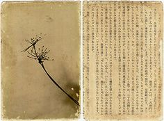 (J. 08) photo printed on paper, handworked with bitumen + a page of japanese book (recto/verso) - 9,5 X 14cm on Flickr.