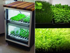 Urban Cultivator. Finally! Can't wait for copies of these to start selling for $100 at your local supermarket!
