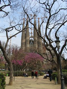 Sagrada Familia ~ the most beautiful building I've ever seen and still under construction. It's been being built since 1882!