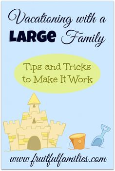 Vacationing with a Large Family..... Tips and Tricks to Make It Work