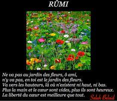 La Pensée Du Jour: Ne va pas au jardin des fleurs, ô ami, (Rûmi)
