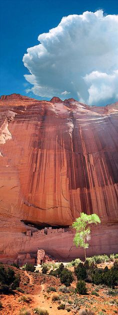 The ancient White House ruins at Canyon De Chelly, AZ. Photograph - Ric Soule