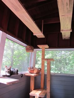 Custom walkways and cat tree for enclosed porch. mountaincattrees.com