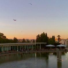 #linhadagua #lisboa #sunset #airplane  #piheons #lake #water #cafee #tea #instagood