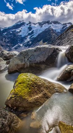 Amazing New Zealand Shine | Nature Board