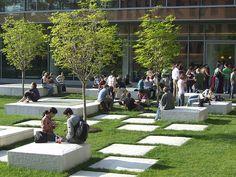 Harvard University, Cambridge, MA by Michael Van Valkenburgh Associates