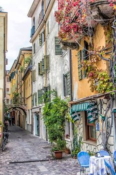 along the shores of Lake Garda. Italy