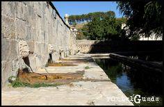 Fuente de Abajo, Fuentelencina - Guadalajara  PortalGuada Guadalajara   La llamada Fuente de Abajo es un bello ejemplar de fuente del siglo XVIII, con seis caños en forma de cabezas de león