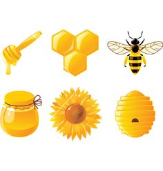 A Good Source of Antioxidants. Raw honey contains antioxidants called phenolic compounds. Antibacterial and Antifungal Properties. Filled with Phytonutrients. Help for Digestive Issues. Soothe a Sore Throat. Honey Benefits, Bee Tattoo, Red Accents, Throw Cushions, Bee Keeping, Vector Free, Vector Stock, Mini, Illustration