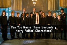 I got 73%! Can you beat my score?We all know Harry, Ron, and Hermione, but what about the rest of the magical minions? - Quiz