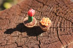 Miniature Cactus Garden, Mini Succulent Garden, Polymer Clay, Set of Potted Cacti, Clay Succulent, Tiny Garden, Fair Garden, Fairy Plants by PaintedDandelion on Etsy