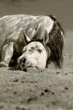 Sleeping Beauty ;)