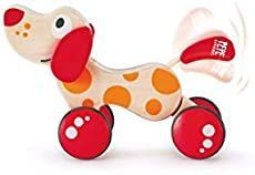 Walk-a-long puppy. What is a best gift for a one year old? For our little one this is it! It's a super popular toy and something he really loves.