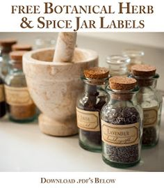DIY Spice Jar Labels - A free download to transform your kitchen  I designed this antique-style set of herb and spice labels a couple years ago to use on vintage spice jars or new recycled glass bottles. They include the botanical (latin) name and common name of each plant. These are lovely decor to enhance your kitchen during cooking or witchcraft or making medicine, although I find these all to be one in the same :) Free to download and print for personal use. Do not print, alter, or…
