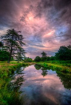 ✯ Bradgate Park, Leicestershire, England