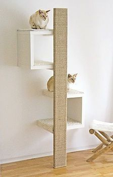 An affordable designer scratching post! Scratching furniture with a beautiful design. Scratching furniture - cats - An affordable designer scratching post! Scratching furniture with a beautiful design. Pet Furniture, Apartment Furniture, Furniture Ideas, Furniture Design, Modern Cat Furniture, Simple Furniture, Cardboard Furniture, Affordable Furniture, Furniture Online