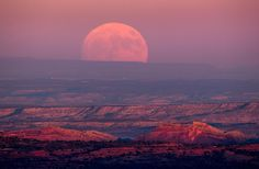 PHOTOGRAPH BY JIM LO SCALZO, EPA