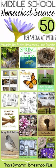Middle School Homeschool Science 50 Free Spring Activities | Tina's Dynamic Homeschool Plus