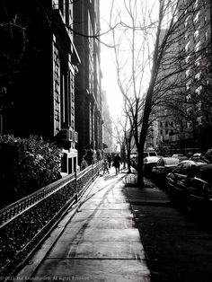 A photo diary of random, ordinary moments . moments that trigger a desire to memorialize them in a photograph. New York Black And White, Black And White Pictures, Street Lights, White Magic, Photo Diary, Heart Art, Black And White Photography, Dream Big, Yorkie