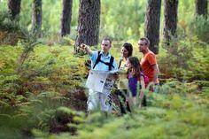 Promenade en forêt en famille à Biscarrosse