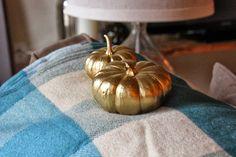 Sweet Verbena: 10 Golden Pumpkins