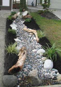 Creeks and dry creek beds in a front yard - these are a great idea for under a downspout. Love the contrasting colors in this dry creek bed and the drift wood.
