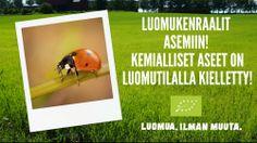 Suomessa käytetään vain vähän torjunta-aineita muuhun Eurooppaan verrattuna, mutta riittää niissä silti valikoimaa. Lue lisää: http://luomuailmanmuuta.fi/time-spray/