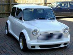 Zeemax mini pearlescent white