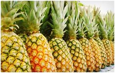 Pineapples have a way of adding instant island flavor to most any dish. But they also pack their own benefits by helping with eye health, gum health, and even easing arthritis pain. Even though it is low in fat and cholesterol free, you'll want to stick to smaller portions due to the sugar content.