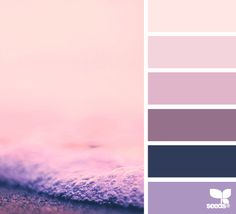design seeds | color froth | for all who ♥ color