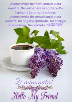 Months In A Year, Good Morning, Night, Quotes, Mariana, Flowers, Buen Dia, Quotations, Bonjour