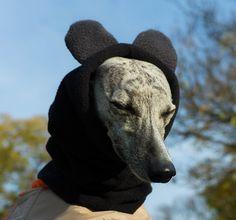 Winter dog snood with ears - fleece dog snood - dog hat / hood - MADE TO ORDER Dog Snood, Dog Winter Coat, Dog Coats, Dog Breeds, Your Dog, Ears, Whippets, Greyhounds, Bandanas