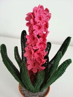 Quando si sente il suo profumo si sa cheègiàarrivata la primavera.Questi bellissimi fiori dalle varie tonalità di colore sono molt...