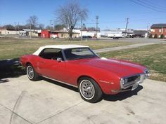 Pontiac Firebird for Sale - Hemmings Motor News Pontiac Firebird For Sale, Pontiac Models, Shelby Gt500, Lifted Ford Trucks, Bugatti Veyron, Land Rover Defender, Concept Cars, Military Vehicles, Cars For Sale